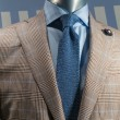 Tan Checkered Jacket With Blue Shirt & Blue Knit Tie (Horizontal — Stock Photo