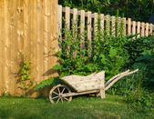 Wheelbarrow Planter — Stock Photo