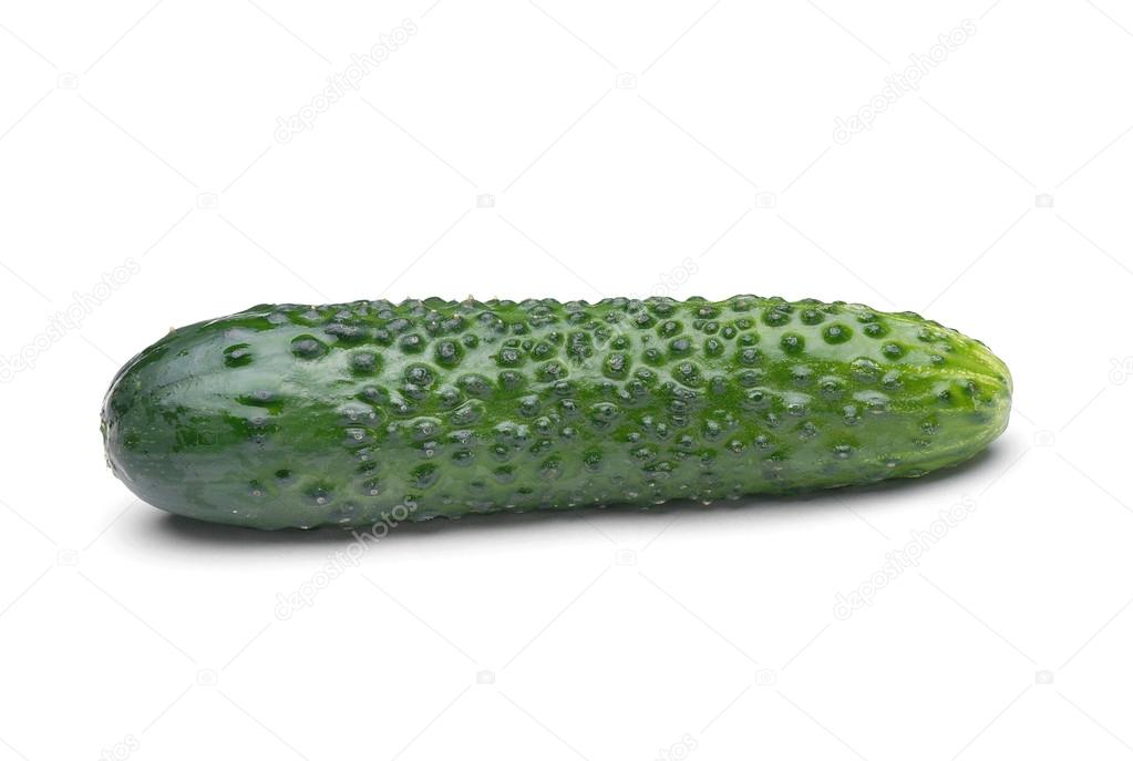 Appetite green cucumber on white background  Stock Photo #17591963