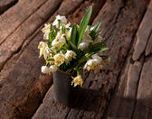 Fading snowdrops in vase — Stock Photo