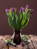 Bunch of purple tulips — Stock Photo