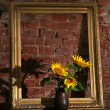 Sunflowers and old frame — Stock Photo