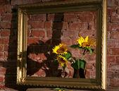 Sonnenblumen und alten rahmen — Stockfoto