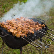 Shish kebab of the pork - Stock Photo