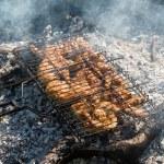 Juicy roasted kebabs — Stock Photo