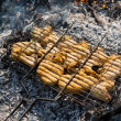 Stock Photo: Juicy roasted kebabs