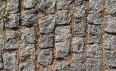 Stone path with dry grass — Stok fotoğraf