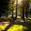 Green city park — Stock Photo