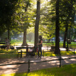 Green city park — Stock Photo #29658795