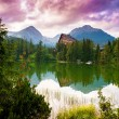 Mountain lake Strbske pleso, High Tatras, Slovakia — Foto Stock