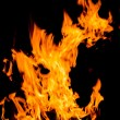 Fire flames — Stock Photo #33073073