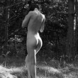 Nude woman posing in the forest — Stock Photo