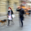Couple walking with a dog — Stock Photo #34955329