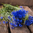 Blue cornflowers — Stockfoto