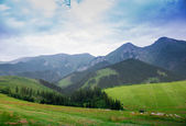 Mountains in National Park High Tatra — Stock Photo
