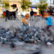 Children playing with doves — Stock Photo #36863293