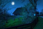 Village house — Stockfoto