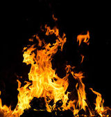 Orange fire flames — Foto Stock
