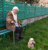 Senior woman sitting on a bench — Foto de Stock