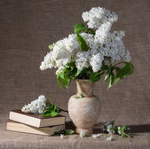 Blooming branches of lilac in vase and books — Stock Photo