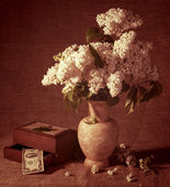 Blooming branches of lilac in vase and dollars in chest — Foto de Stock