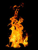 Orange fire flames — Foto Stock