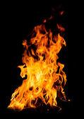 Llamas anaranjadas fuego — Foto de Stock