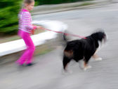 Walking the dog on the street — Stock fotografie