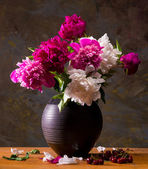Still life with peonies and cherries — Fotografia Stock
