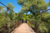 Hanging bridge over the little river  — Stock Photo