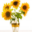 Beautiful sunflower in a vase — Stock Photo #50719329