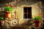 Window Tuscany — Stock Photo