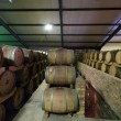 South Africa, Stellenbosch, Barrel cella — Stock Photo
