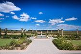 Der stellenbosch wein landet nahe kapstadt — Stockfoto