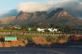 Vineyards, Stellenbosch, South Afric — Stock Photo