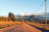 De wijn stellenbosch landt regio in de buurt van kaapstad — Stockfoto