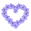 Violet flowers arranged into a heart shape — Stock Photo