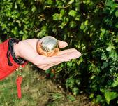 Little golden globe — Stock Photo