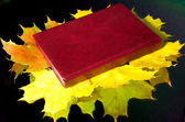 Book lying on autumn maple leaves — Stock Photo