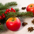 Red apples, star anise and spruce branches — Stock Photo #36939927