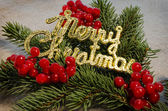 Merry christmas, viburnum berries and spruce branches — Stock Photo