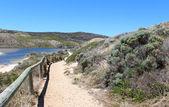 Path to Margaret river south western Australia — Stock Photo
