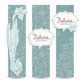 Romantic spring daffodils banners set — Vector de stock