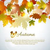 Fond automne coloré avec des feuilles — Vecteur