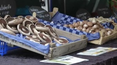 Mushrooms on a Dutch market — Стоковое видео