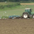 Tractor plowing field — Stock Video #18689457