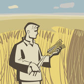 Man in wheat — Stock Vector