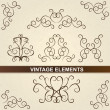 Decorative floral brown elements. Vintage design. — Stock Photo