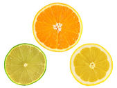 Slices of ripe orange, lemon, lime on white — Stock Photo