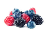 Fresh blueberries, raspberries and blackberries — Stock Photo